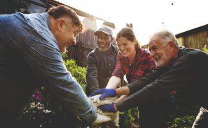 gardening, public garden, friends