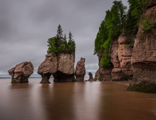 There's Plenty to Experience in New Brunswick